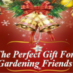 The Perfect Christmas Gift for the Gardener