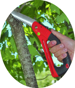 TGF folding pruning saw